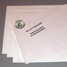 Envelopes - Large
